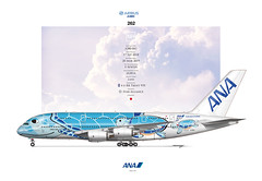 ANA A380 JA381A (m2designhk) Tags: a380 airliner art illustration drawing airbus msn262 all nippon airways ana ja381a nh lani flying honu ilovesideview fwwsh