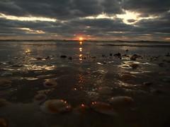 Блики (unicorn7unicorn) Tags: море закат облака лучи пляж 365the2019edition 3652019 wah israel ישראל day69365 10mar19