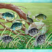 Dwarf Sunfishes