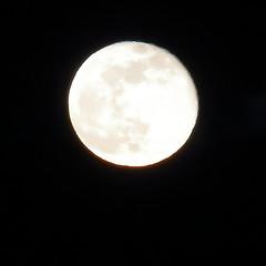 Full Moon,Aberdeen_Feb 19_781 (Alan Longmuir.) Tags: misc sky grampian aberdeen moon fullmoon night