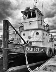 2018-12-30 Culbertson Tug Quilceda (B&W) (800x1024) (-jon) Tags: anacortes fidalgoisland sanjuanislands skagitcounty skagit washingtonstate washington fidalgobay capsantemarina marina commercial adock salishsea portofanacortes boat ship vessel tugboat tug blackandwhite bw culbertson quiceda a266122photographyproduction culbertsonmarineconstruction marine construction