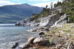 Smugglers Hike - 007. (i threw a guitar at him.) Tags: alaska skagway smugglers cove trail hike september 2018 nikon d3100 klondike national park us landscape water beach rocky driftwood mountain high tide