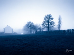 Foggy Days (DomWLive) Tags: trees tritone urban northeastengland countydurham spring peterlee fields adobephotoshop fog landscapes weather imageediting april england unitedkingdom gb