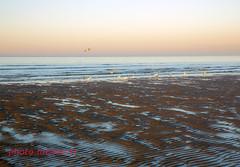 Soleil couchant sur la plage de Dunkerque (louis.labbez) Tags: mer 2019 labbez nord dunkerque février 59 town ville harbour sea ciel sky bleu plage sable sand sun soleil couchant orange oiseau mouette bird seagul hautsdefrance france