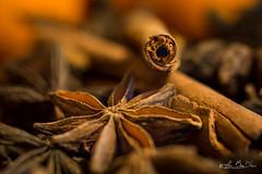 Saveur d'épices...! - Flavor of spices ...! (minelflojor) Tags: épice anis badiane étoilé canelle naturemorte sec etoile baton flou bokeh macro arome mélange ingrédient aniseed star anise spice blossom apple aroma ingredient graine seed tamronsp90mmf28dimacro11vcusd