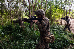 "U.S. Marines conduct a patrol during a jungle training event at the U.S. Army Kahuku Training Area (#PACOM) Tags: producereadiness projectpower promoteresiliency amphibious commstrat communicationstrategyandoperations marines mcaskaneohebay mcbh mokapupeninsula thesuperiorinstallationforwarfighters usmc 23 2ndbattalion 3rdmarineregiment iiimef rifleman m4 jungle kta usarmykahukutrainingarea hawaii unitedstates us usindopacificcommand ""usindopacom"