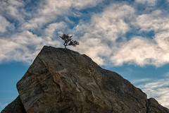 Heavenward (RkyMtnGrl) Tags: landscape nature scenery vista rock tree clouds sky allenspark colorado 2019 winter january