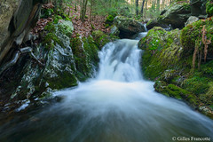 Waterfall (gillesfrancotte) Tags: 2019 amblève ardennes aywaille chefna d800 january janvier nikon outdoor quarreux stoumont cascade creek eau fall hiver landscape longexposure nature rocks stream torrent water waterfall waterscape winter