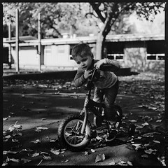 Peter at Del Rey (Graham Gibson) Tags: hasselblad 503 cx cm 500 500cm 503cx 6x6 120 film 80mm zeiss planar f28 t ilford pan f plus panf 50 black white bw