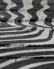 Black and white (giuselogra) Tags: blackandwhite biancoenero torino turin piedmont piemonte murales parcodora park streetphotographer streetart streetphoto streetlife street italy italia