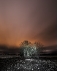 stairway to nowhere (LonánWL) Tags: landscape outdoor field snow snowy snowcovrered cloud night sky stair stairway paysage exterieur champ nature neige neigeux enneigée ciel nuages escalier nuit tree trees arbre arbres orange