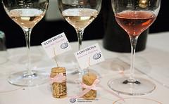 Drink Pink Think Pink-21 (Associazione Italiana Sommeliers - Verona) Tags: ais verona veneto angelo peretti chiaretto rosè valtenesi cerasulo castel del monte salice salentino