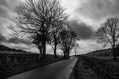 Drama Of A Country Lane (Brian Travelling) Tags: scotland pentax pentaxdal pentaxk20d peace peaceful country countryside rural lane trees hedges clouds sky weather