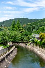 (蔡藍迪) Tags: tokyo japan japanese d600 nikon 50mm 18g 日本 京都 關西 山科 山科疏水