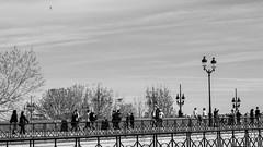 DSCF2112 (LexomIA) Tags: bordeaux street urbain bw nb streetphotography carnaval2019