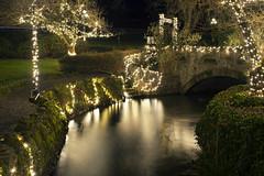 Phelps Creek (Curtis Gregory Perry) Tags: hoodriver oregon river phelps creek water stone bridge night longexposure nikon d810 light christmas tree reflection