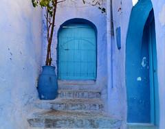 Chefchaouen, Morocco, January 2019 D810 592 (tango-) Tags: chefchaouen bluecity villaggioblu bluevillage morocco maroc 摩洛哥 marruecos марокко المغرب