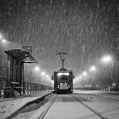 20190311_2102-P1080321-web (amm78) Tags: 2019 g6 leicadg2514 stpetersburg mirrorless panasonic snow street amm78 blackandwhite monochrome lumix snowstorm