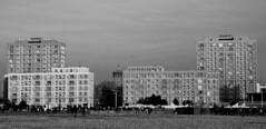 Le Havre - La Porte Océane - Noir et blanc (Philippe Aubry) Tags: normandie seinemaritime paysdecaux pointedecaux lehavre porteocéane immeubles centrereconstruit augusteperret