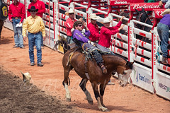 Calgary Stampede 2016 (tallhuskymike) Tags: calgary stampede event rodeo cowboy horse action alberta 2016 calgarystampede prorodeo outdoors