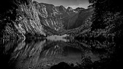 Obersee (bc-schulte) Tags: oneplus3 smartphone blackwhite weiss schwarz berchtesgadener land obersee bayern germany alpen berge see wald bäume