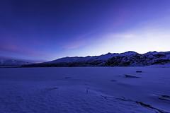Blue landscape before sunset in winter Alaska (Yu Takada) Tags: blue mountain alaska white sunset lake ice winter
