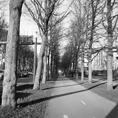 Allégatan (rotabaga) Tags: sverige sweden svartvitt göteborg gothenburg blackandwhite bw bwfp 120 6x6 mediumformat mellanformat lomo lomography lubitel166 twinlens ilford
