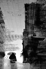 Rainy days (jaume zamorano) Tags: blackandwhite blancoynegro blackwhite blackandwhitephotography blackandwhitephoto bw ground gente girona lluvia monochrome monocromo nikon noiretblanc nikonistas pov people pluja pluie rain street streetphotography streetphoto streetphotoblackandwhite streetphotograph urban urbana w
