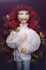 * * * (*TatianaB*) Tags: bjd abjd balljointeddoll bjddoll migidoll cynicalyujin roses