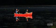 A Father's Delight-6698.jpg (bryanstewartcreative) Tags: bryanstewartcreative summer june canoe canoeing fatherandson father son row rowing boat paddle early dawn golden hour spotlight lighting composition river pond water dark vibrant nature people naturephotography peoplephotography earlymorning earlymorninglight nikon nikond750 d750 puremichigan michigan southeastmichigan naturalmichigan men boys thegreatlakesstate peace michiganawesome awesomemitten michiganislife red brilliant highlighted highlight