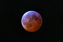 Total eclipse of the moon (sniggie) Tags: bloodmoon eclipse moon supermoon totallunareclipse wolfmoon stars universe lunareclipse