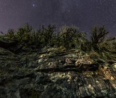 Nightsky Branches (free3yourmind) Tags: nightsky branches rocks night stars starry georgia adjara machakhea national park view down up