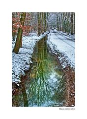 Winter Impressionen (mikael.heinrichson) Tags: mikaelheinrichson panasonic dmcfz1000 fz1000 winter