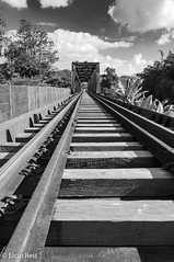 Guararema train track (elcio.reis) Tags: track sãopaulo guararema nikon ponte pontilhão brazil blackwhite pb bw brasil rail trilhos br
