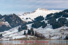 Lac Noir (Stefano Procenzano) Tags: schwarzsee fr svizzera ch lacnoir lac lago lake d600 nikond600 cantonfribourg nikon zeissmilvus50mmf14distagon zeiss milvus1450 zf2 milvus 50mm f14 50mmf14 manualfocuslens mflenses