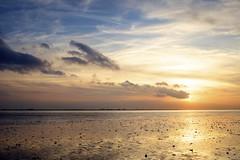 Westerschelde bij Waarde (Omroep Zeeland) Tags: westerschelde waarde slik wolken wolkenlucht scheepvaart zonsondergang sunset