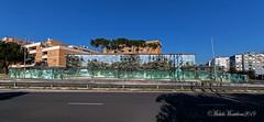 Murales a Roma (Michele Monteleone) Tags: monteleonemichele canon 5dmarkiii cielo albero strada tetto edificio street streetart jerico