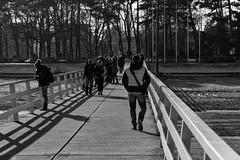 On the pier (michael_hamburg69) Tags: timmendorferstrand ostholstein germany deutschland ostsee balticsea seebrücke pier people menschen monochrome beach strand timmendorf lübeckerbucht