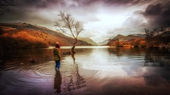 Beauty of nature . (Einir Wyn Leigh) Tags: landscape lake wales nature mountainside rugged water outside rural colorful tree atmosphere beauty