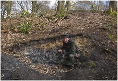 Ince 4ft seam, Haigh plantation woods, Wigan (Pitheadgear) Tags: haigh wigan haighcountrypark haighplantations haighhall coal geology seam coalmining coalmeasures