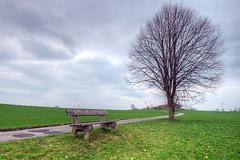 Sitzgelegenheit (wolf238) Tags: bank weg baum tree ländlich