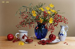 Red  Berries (Esther Spektor - Thanks for 12+millions views..) Tags: stilllife naturemorte bodegon naturezamorta stilleben naturamorta composition creativephotography tabletop bouquet branch berry food fruit plum redcurrant flowers vase cup plate mug pitcher glass creamics pattern ambientlight white red green yellow cobalt beige estherspektor canon