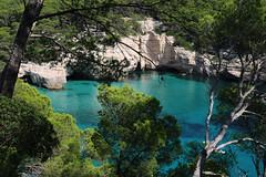Blue through the pines... (Zé Eduardo...) Tags: blue water pines nature colors cala mitjana menorca island baleares spain eu europe mediterranean clifts travel balearic sea outside tree