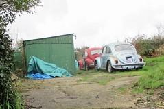 1971 VW Beetle 1300 (occama) Tags: nab503k vw beetle volkswagen blue pair old car cornwall uk german aircooled coccinelle kaefer kaver