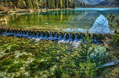 Lago (giannipiras555) Tags: lago colori verde green riflesso natura alberi dolomiti panorama landscape autunno