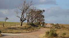 0335 Weg ob - way above; Streaky Bay (roving_spirits) Tags: australia australien australie southaustralia eyrepeninsula
