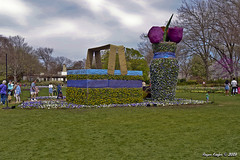 IMG_5570 (Roger Kiefer) Tags: dallas arboretum outdoors beauty nature landscape