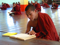 Study monks (Dick Verton ( more than 13.000.000 visitors )) Tags: monnik monks monastry burma learning reading asia traveling red sitting