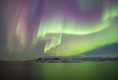 Aurora show (tranqvilizator) Tags: auroraborealis aurora polarregion winter snow sky sea barentssea teriberka sigma20mmf14 landscape nature