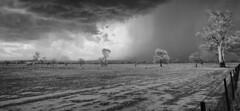 Storm arriving (infrared) (i-lenticularis) Tags: bethungratemorard storm newsouthwales australia ruralscene infrared huginpanorama contaxg21f28 ricohgxra12ir